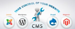 CMS-compulsory part of how to make a blog