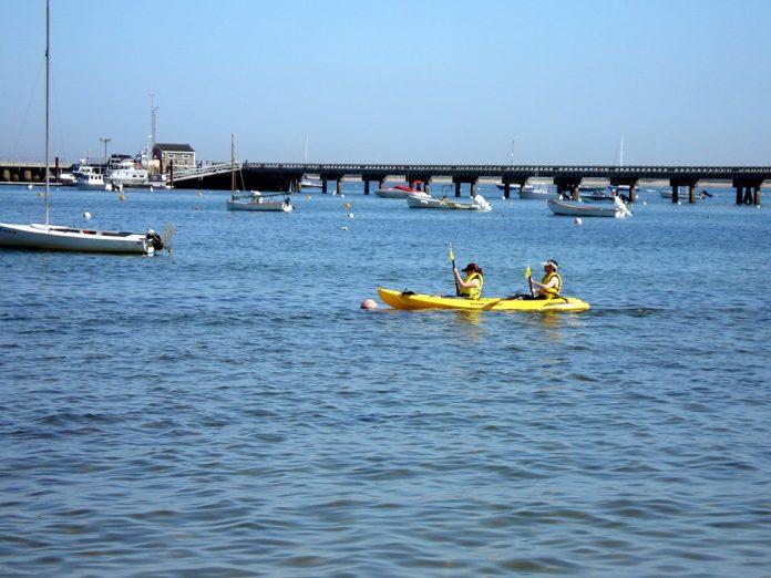 Cape Cod kayaking