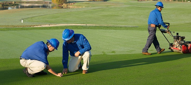 Golf Course Conditions Few Tips to Make Your Golf Course That Stands Out