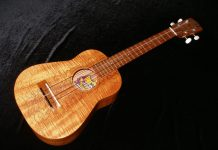 Hawaiian ukulele chords, voicing and fingering tips