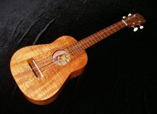 Hawaiian ukulele chords, voicing and fingering tips